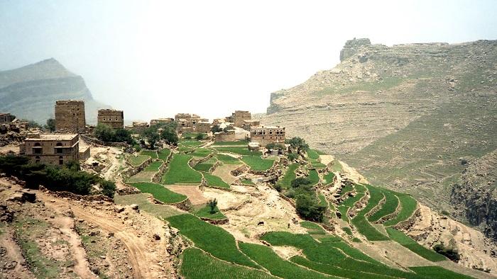 Hiking: Arabian Highs