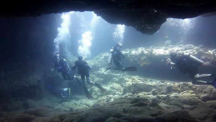 Dive Arabia: The Essentials