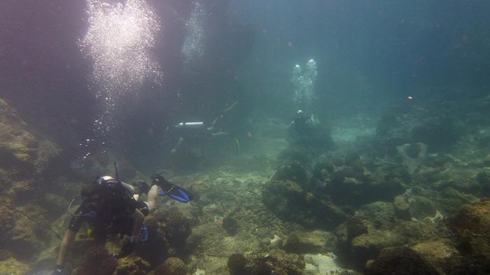 An Underwater Clean Up