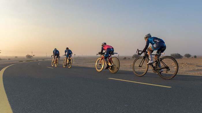The Bluecoat Ladies of Cycle Hub