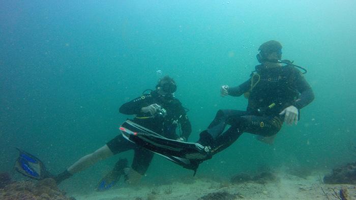 Dive Hotspot: Oman