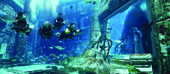 Dive Atlantis at Aquaventure Waterpark