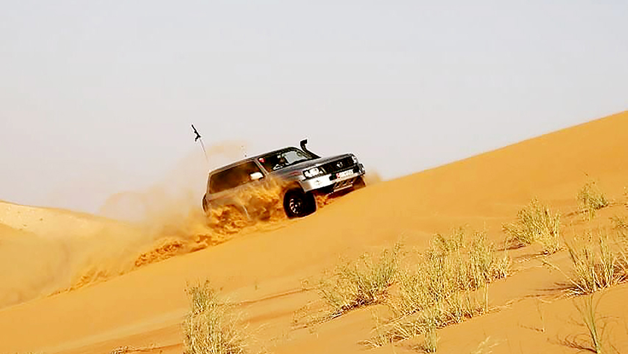 The Off-Roaders Corner: Amro and his Roaring Lion