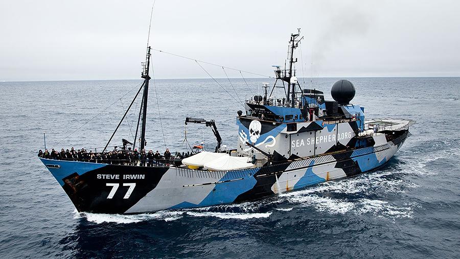Sea Shepherd 40th Anniversary and UAE Launch