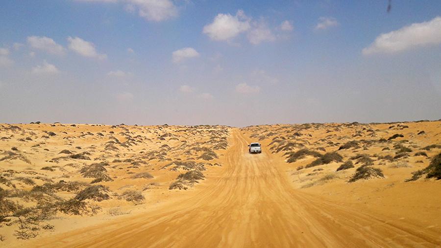 The Omani Coast and Wahiba