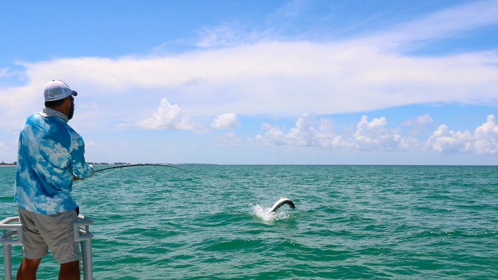 The Quest for a Tarpon on Fly
