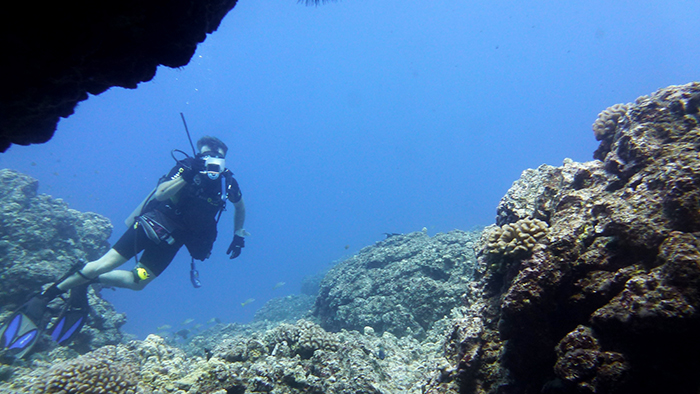 New Year, New Hobby: Scuba Diving