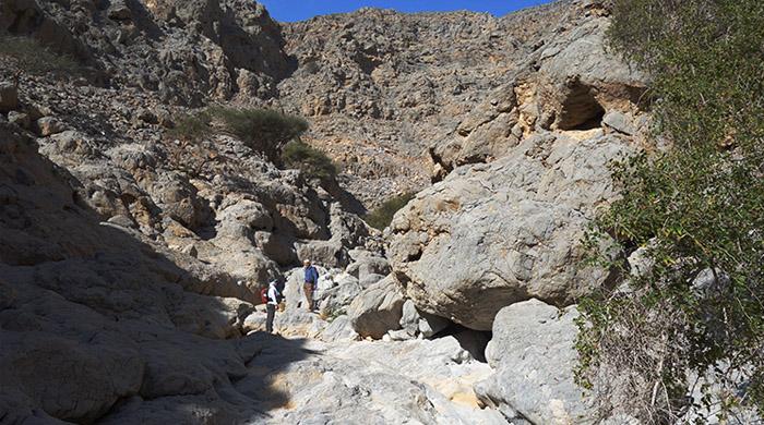 Cave-Tastic Hike