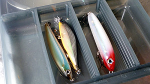 i-allocate-a-couple-of-compartments-for-lures-i-use-when-i-fish-so-the-other-lures-in-the-box-wont-get-wet-and-get-salt-on-them