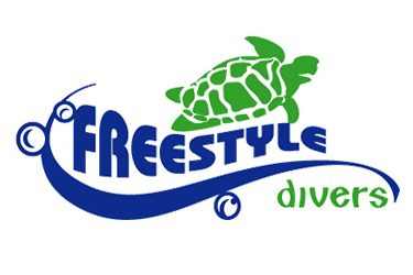Freestyle Divers