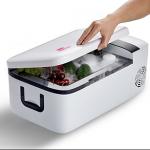 IndelB portable fridge