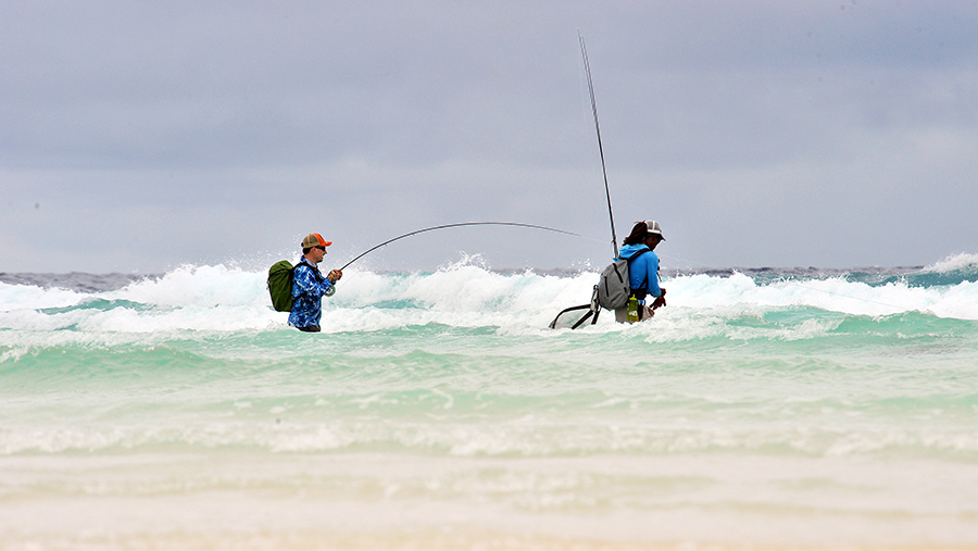 Astove Atoll: Fly Fishing for the Masters of Destruction