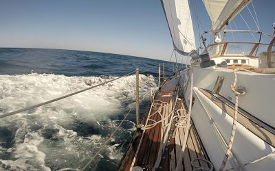 26th Edition of the Annual Dubai to Muscat Offshore Sailing Race