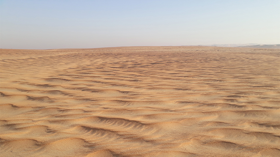Oman-Tour-Discover-Beaten-Offroaders-Track-Adventures-Offroad-Marina-Bruce