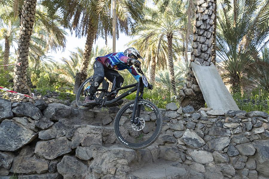 titan downhill mountain bike