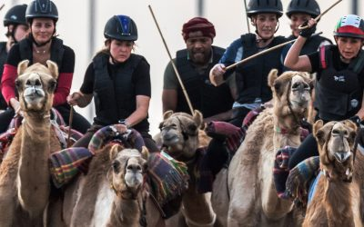 Crown Prince Camel Racing Festival & Sheikh Hamdan Heritage foundation
